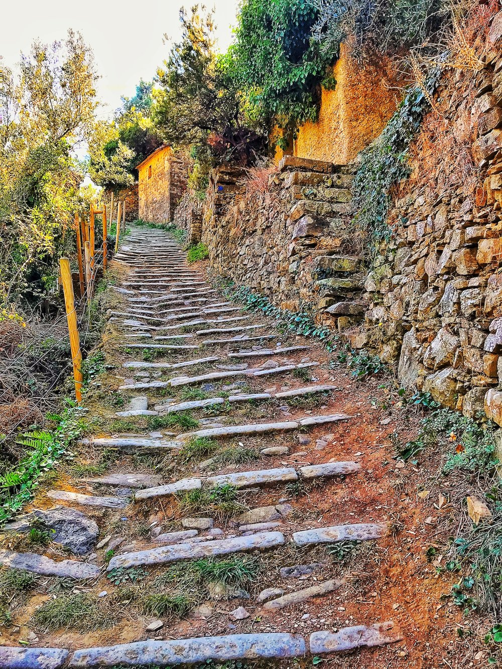 Climbing Old Stone Steps Riomaggiore.