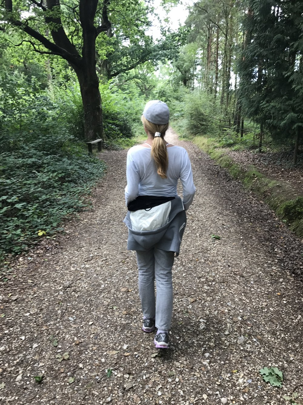 A Broad In London Walking in The New Forest.jpg