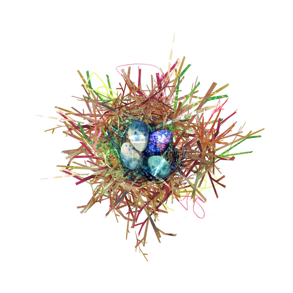 universe nest.jpg