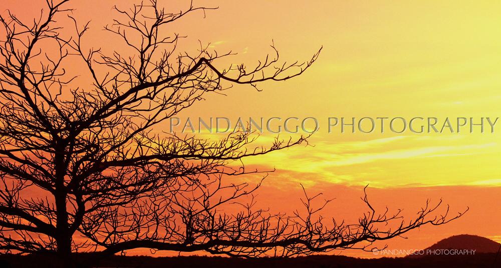 gapalagos-sunset.jpg
