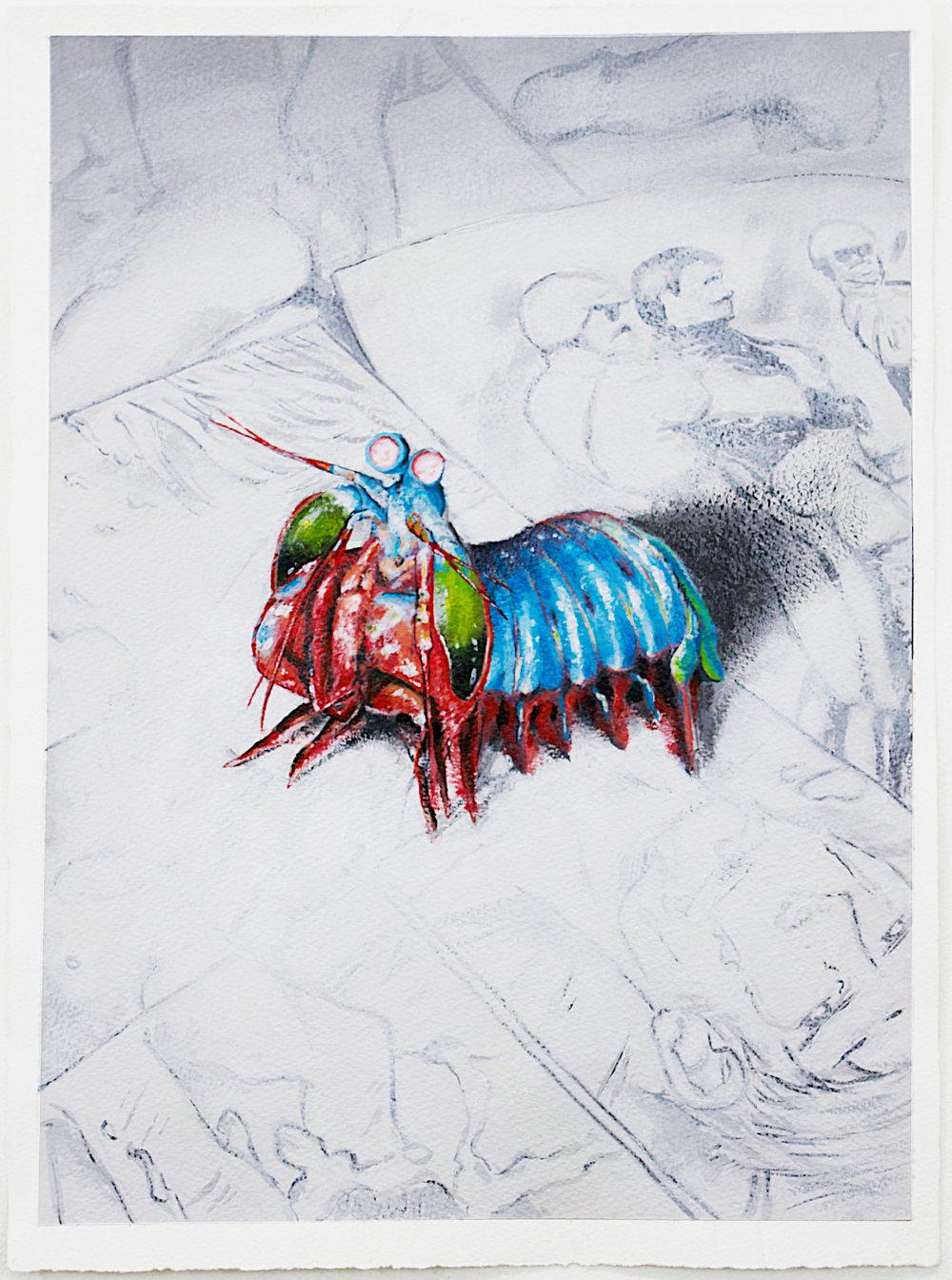 Mantis Shrimp on Comics, 2018