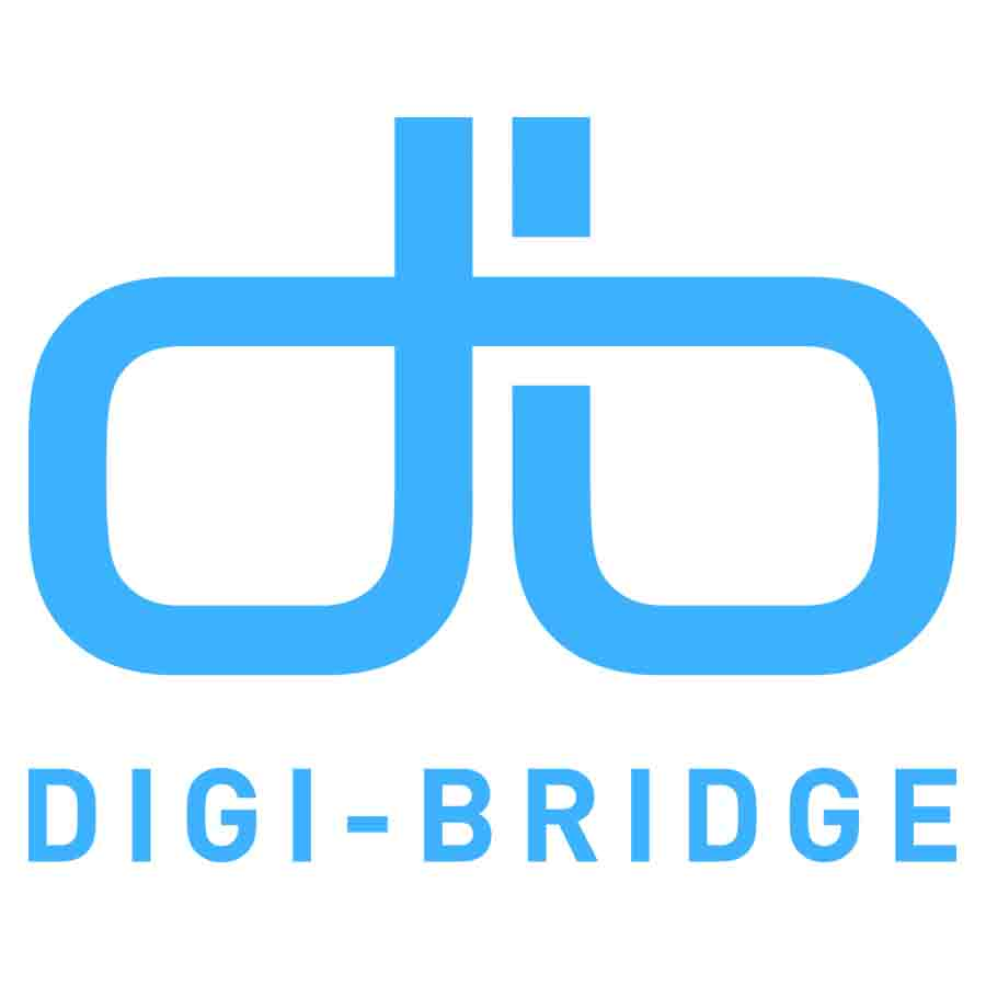 DIGI-BRIDGE.jpg