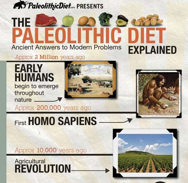 paleolithic-diet-infographic.jpeg