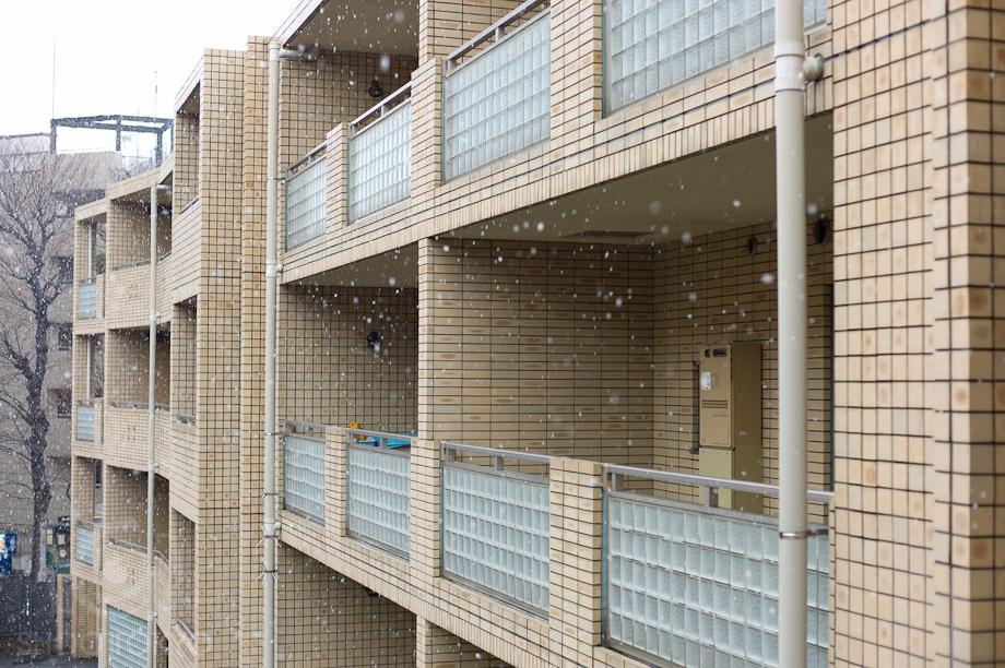 Snowing_in_Tokyo_2