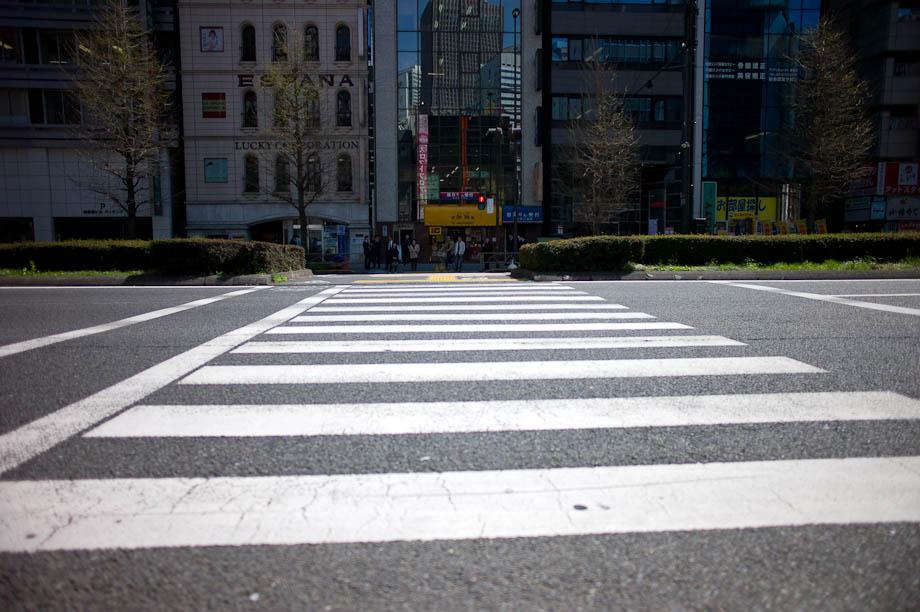 Crossing in Shinjuku, Tokyo, Japan
