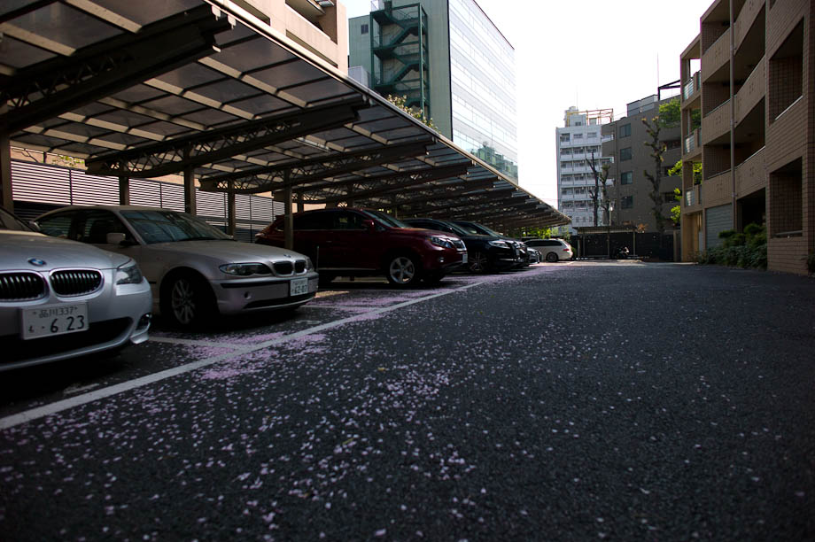 My drive way in Nakameguro, Tokyo, Japan