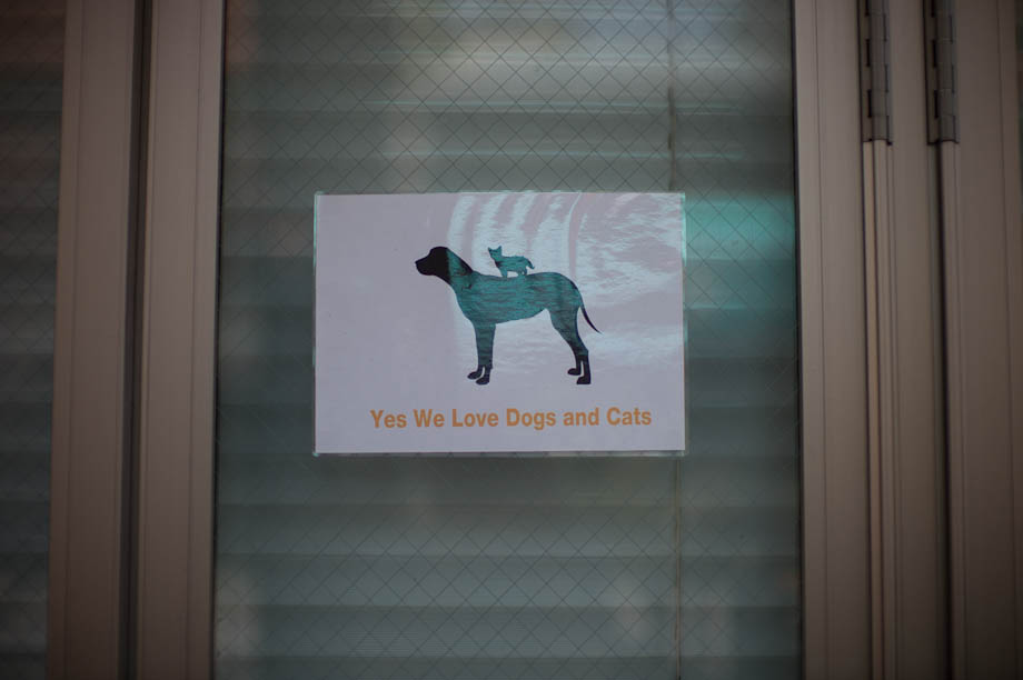 Dog and Cats welcome at a cafe in Nakaemeguro, Tokyo, Japan