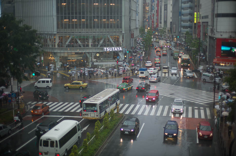 Rainy Shibuya Crossing