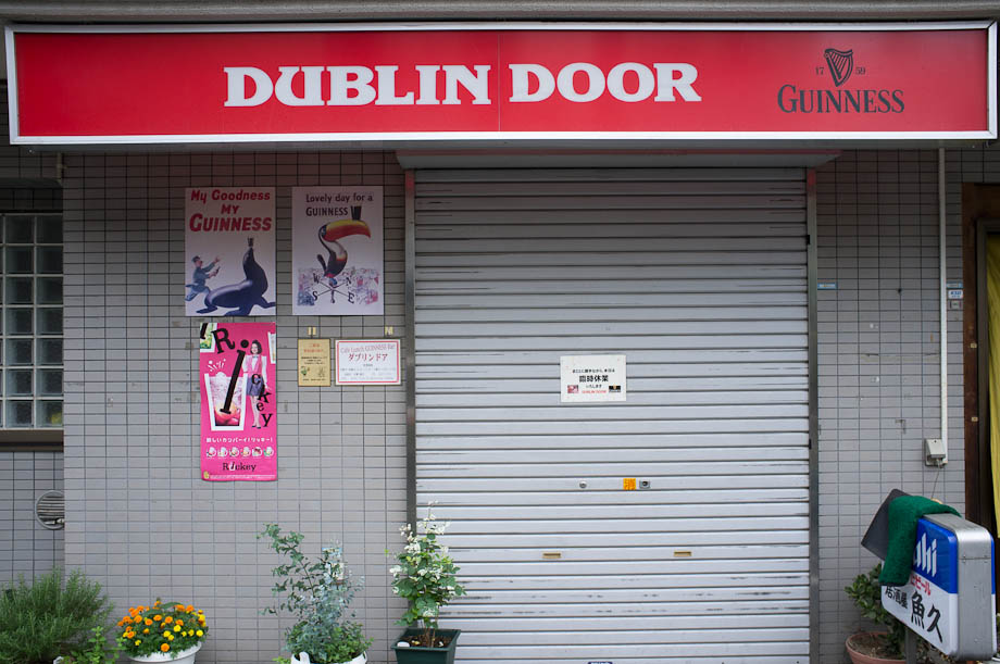 The Dublin Door