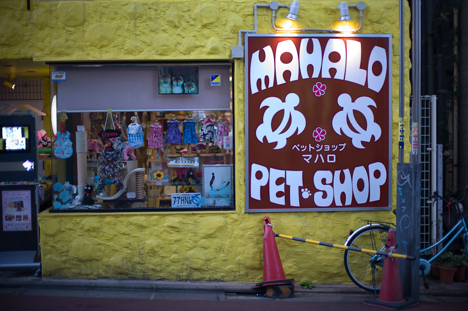 Mahalo Pet Shop in Jiyugaoka