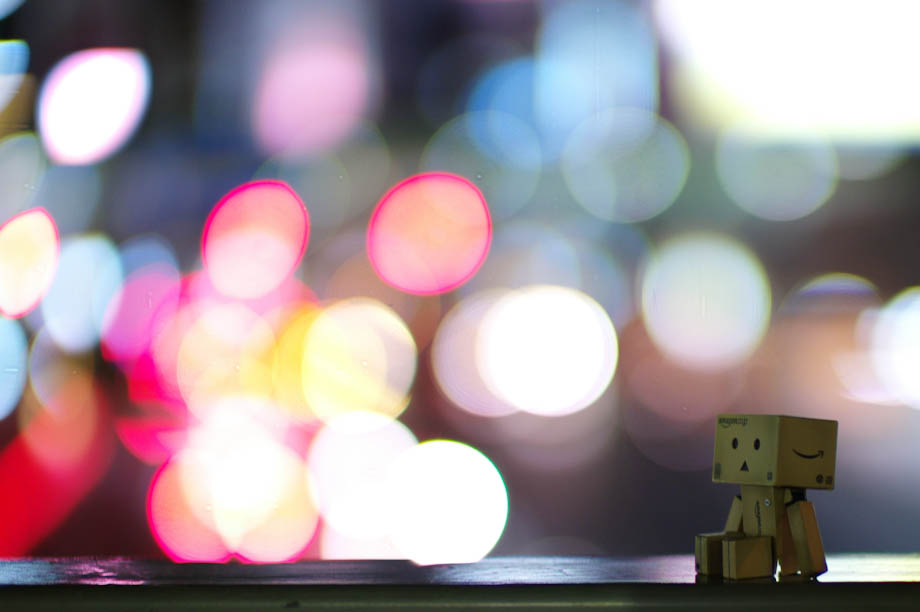 Danbo Big City Lights