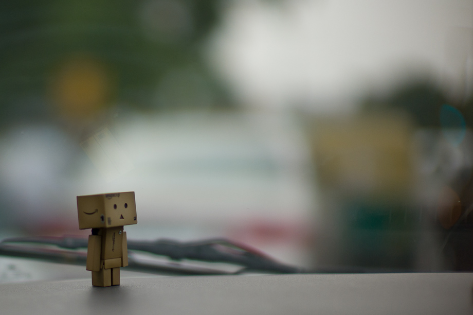 Danbo in Delhi Traffic