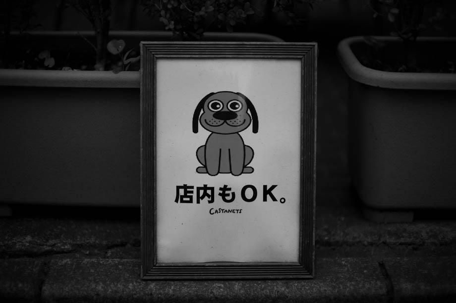 Dogs OK