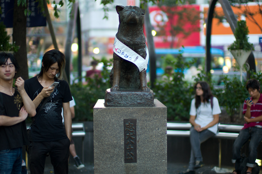 Hachiko at Shibuya Station