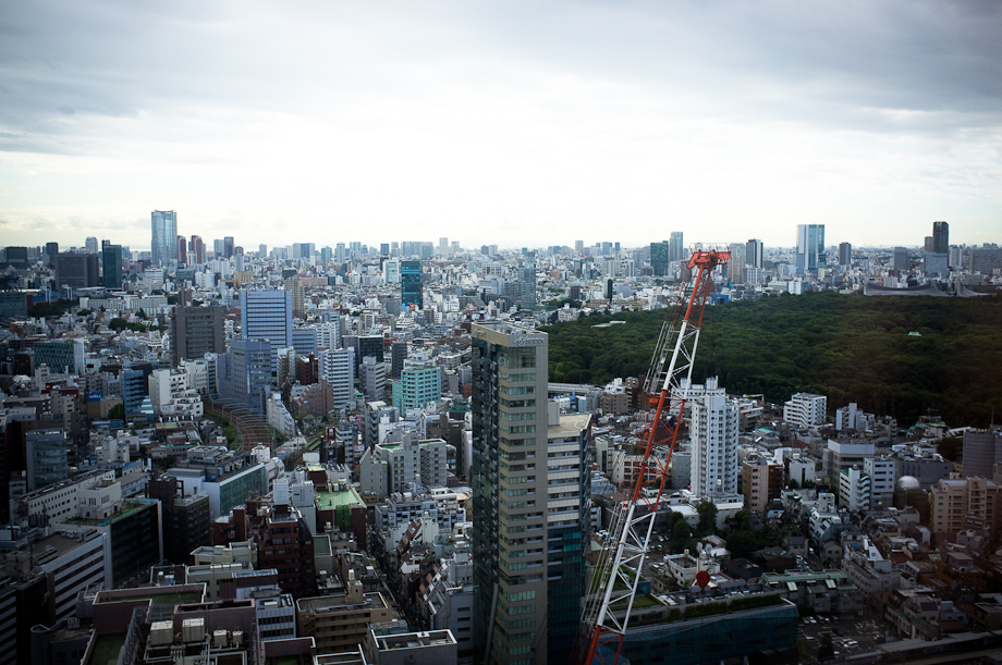 View of Tokyo from Maynds Tower
