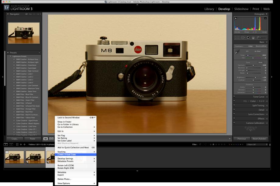 The Leica M8