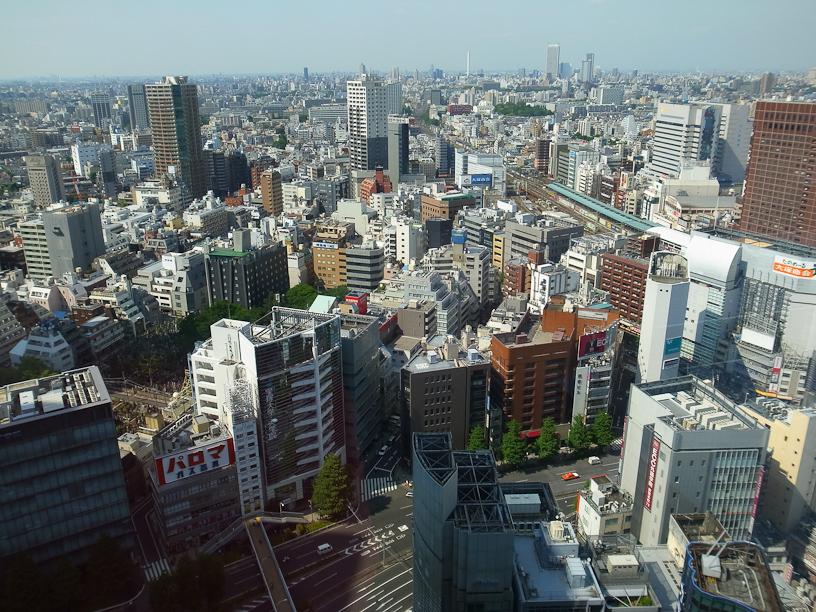 Shinjuku from above