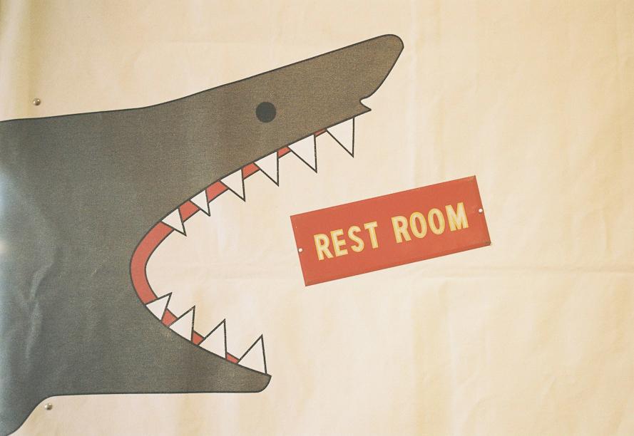 Rest Room Shark