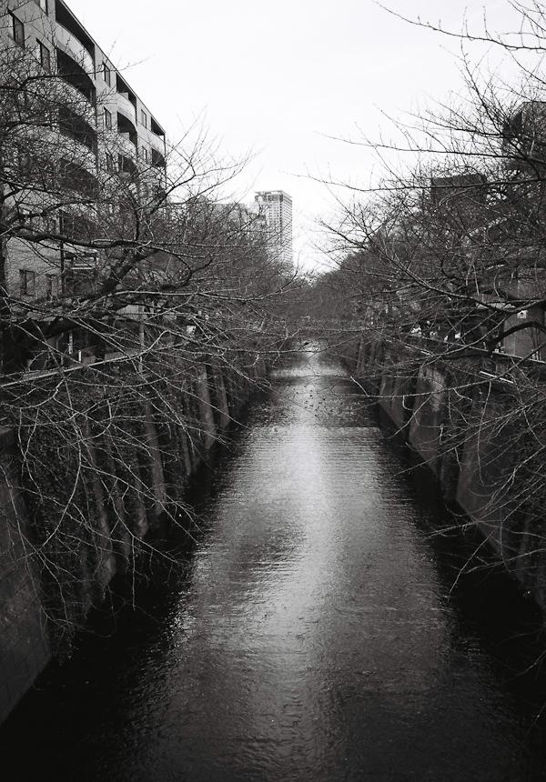 Meguro River in Nakameguro