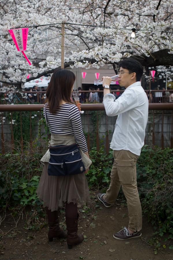 Ohanami in Nakameguro