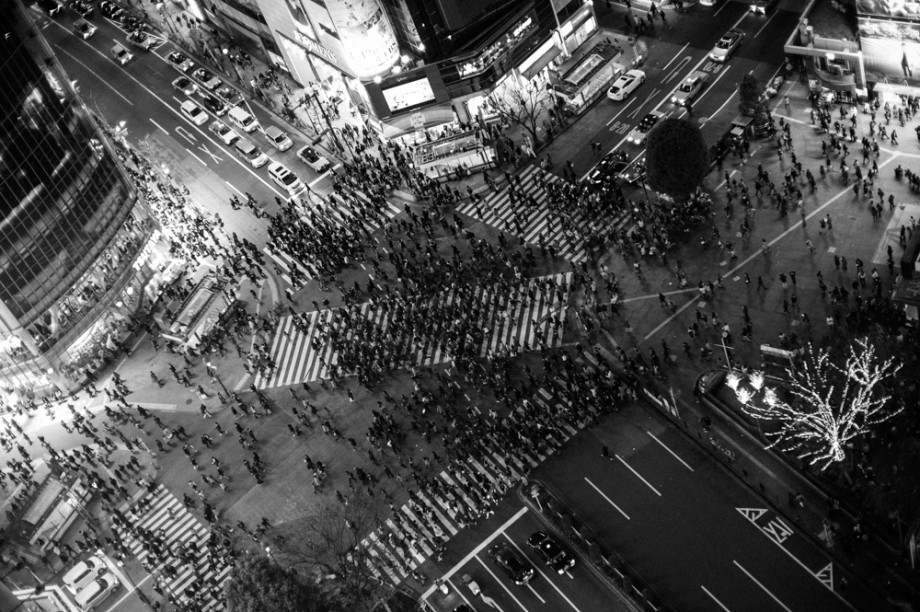 The Ants of Shibuya
