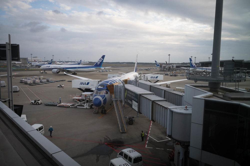 ANA Star Wars Airplane