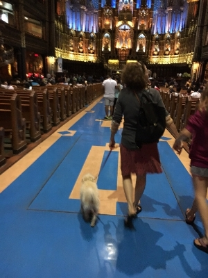Boozle in awe of Montreal's Norte-Dame