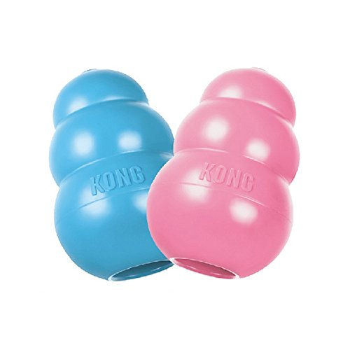 KONG Puppy KONG Toy, Color may be Pink or Blue