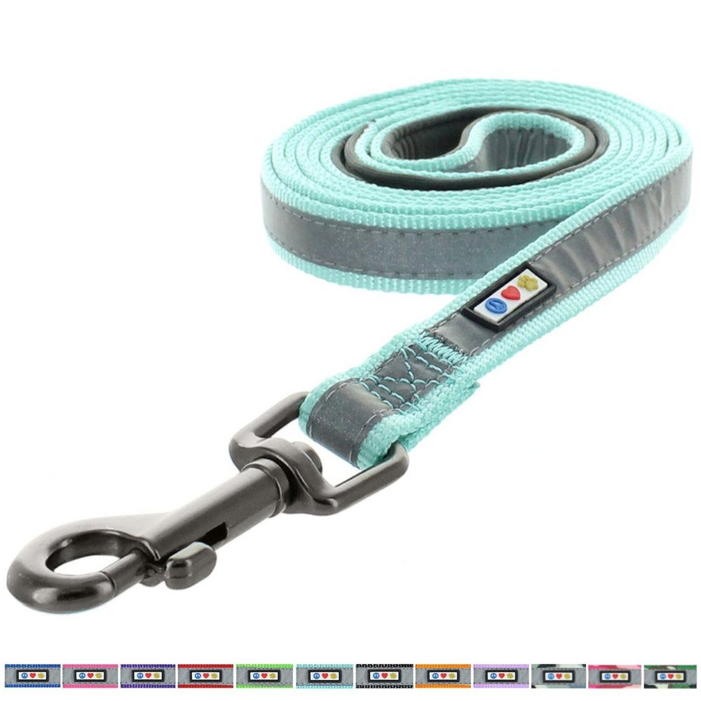 Pawtitas Pet 6 - feet Reflective Padded Dog Leash