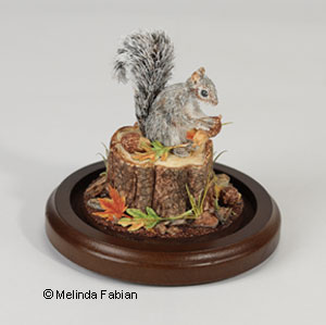 Squirrel Paper Sculpture