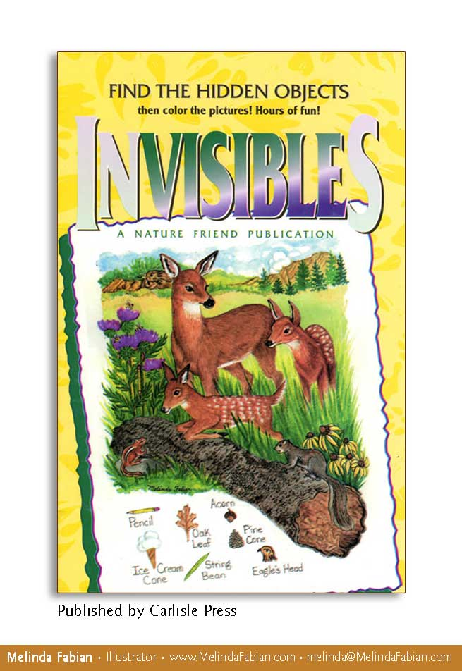Invisibles hidden object book for children.