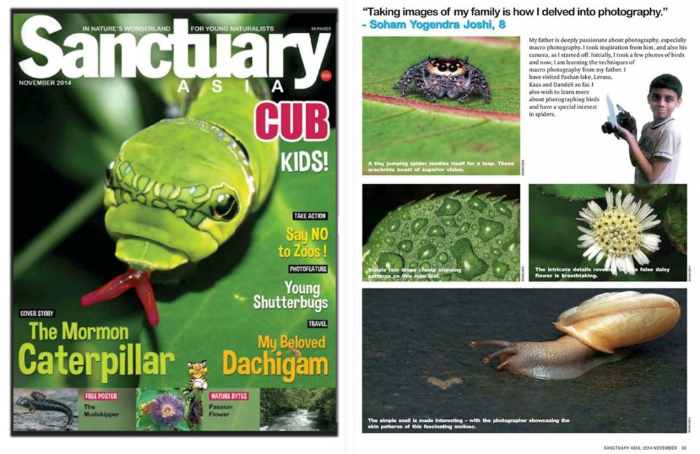 Soham's work published in prestigious Sanctuary Asia CUB magazine