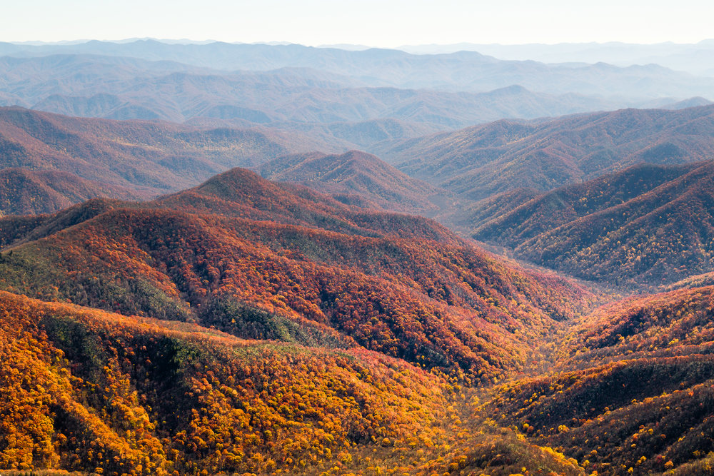 Autumn, Great Smoky Mountains.