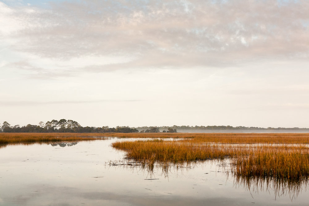 South Carolina Lowcountry tidal wetlands.