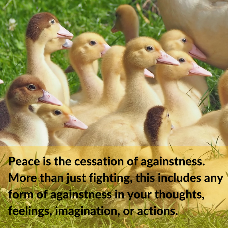Canva-FB-peace cessation.png