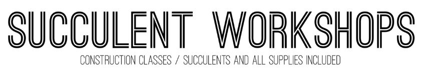 succulent font