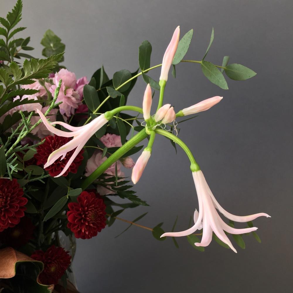 iphonography-flowers-droopynerine.jpg