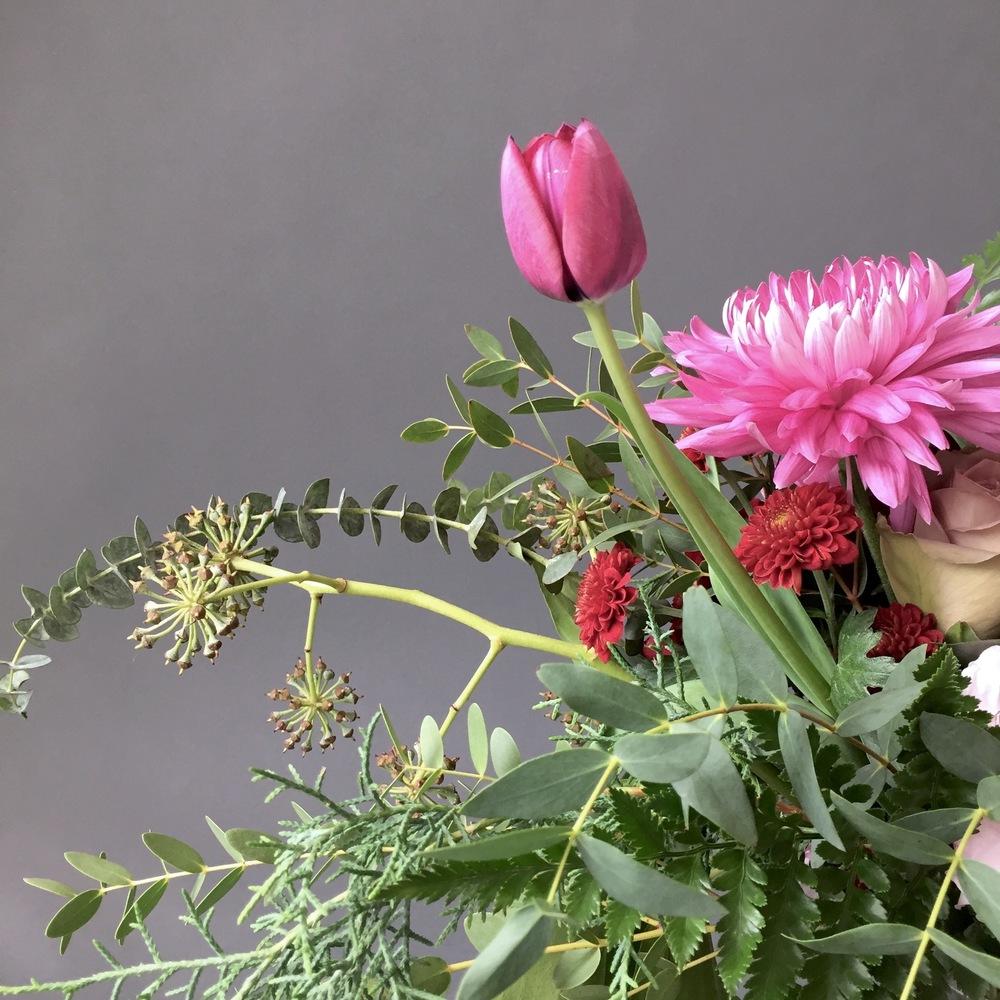iphonography-flowers-tulip.jpg