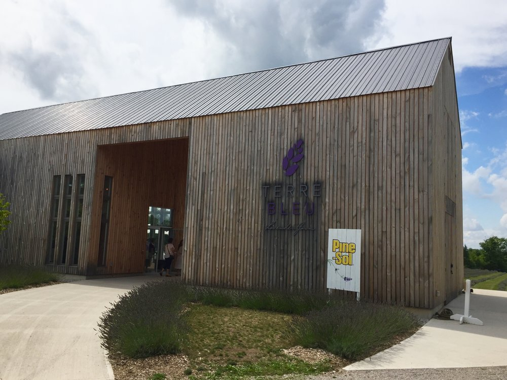 The main building houses a lovely shop and is a fantastic modern barn design.