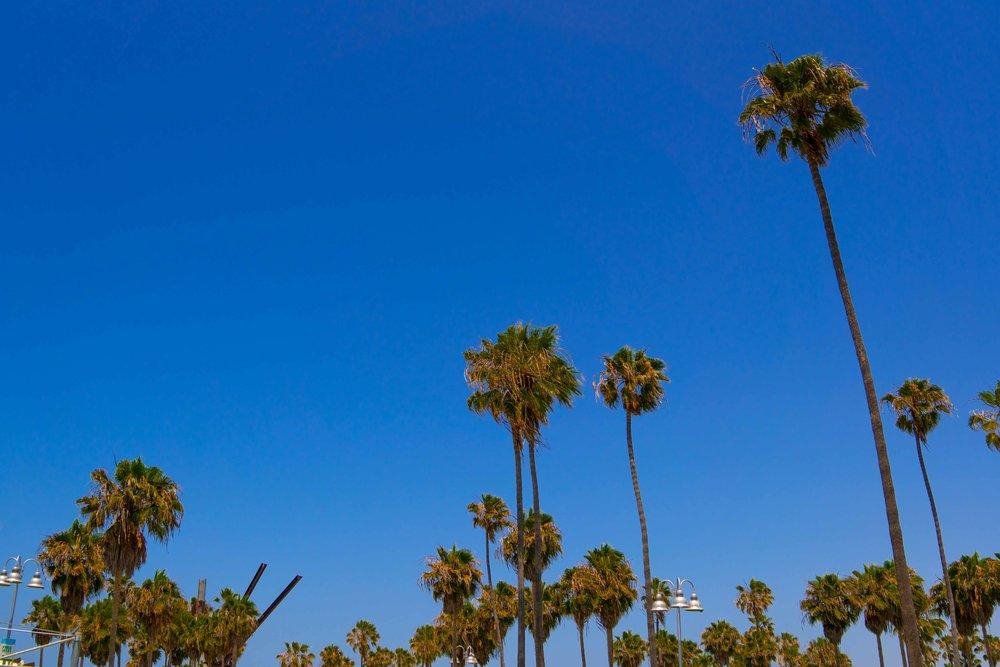 20180628-Los Angeles-410.jpg