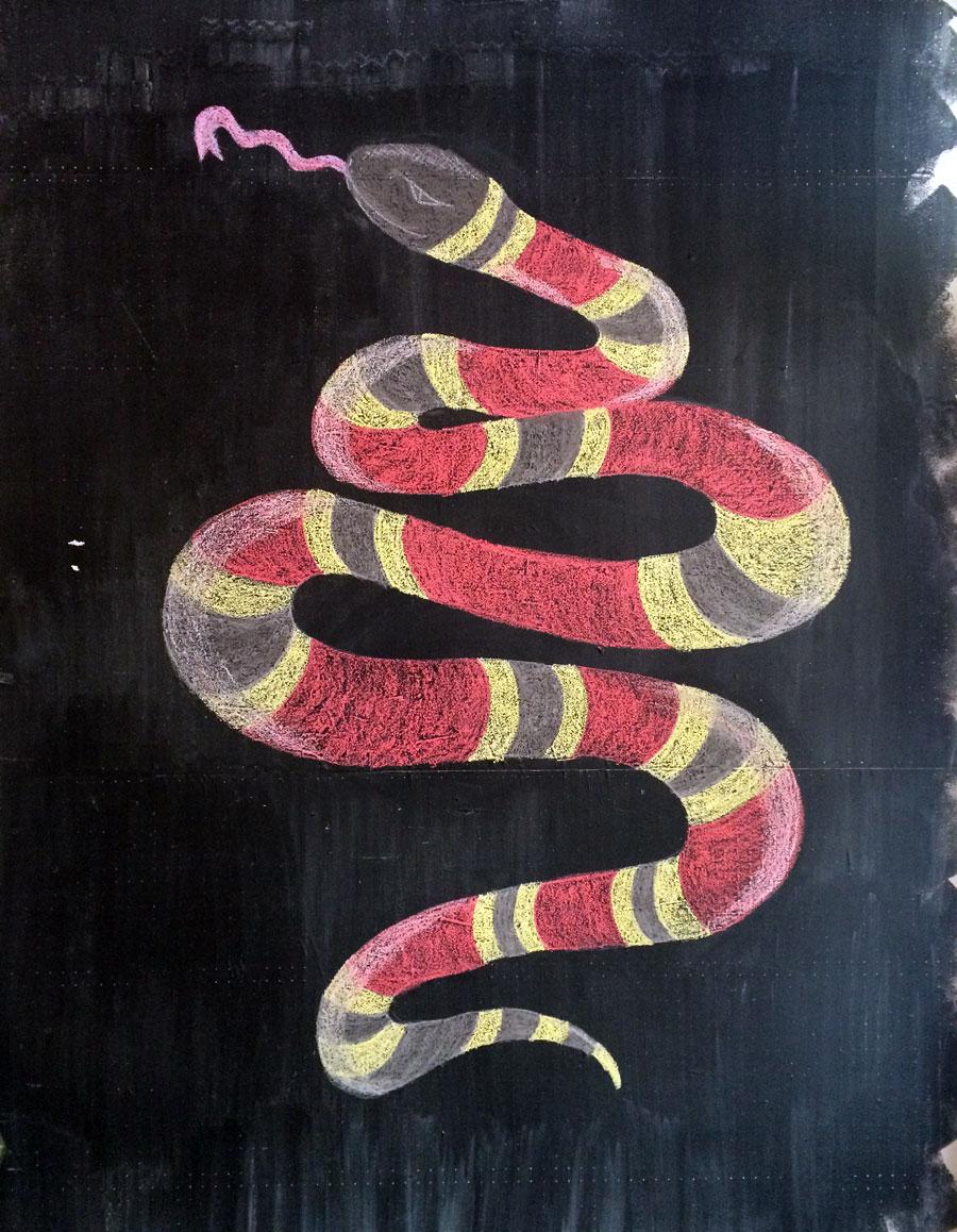 snake22.jpg