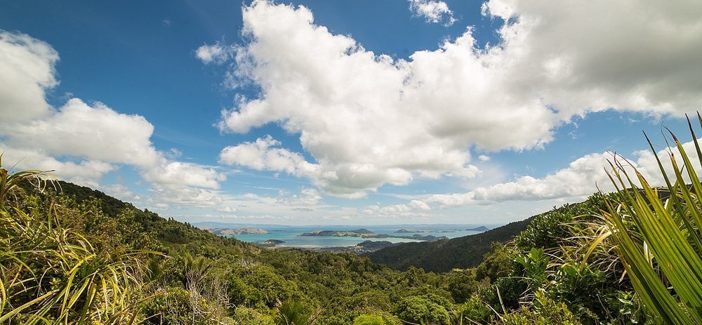 NewZealand-GroovyBanana-VanuatuPhotographers-Photography_0038.jpg