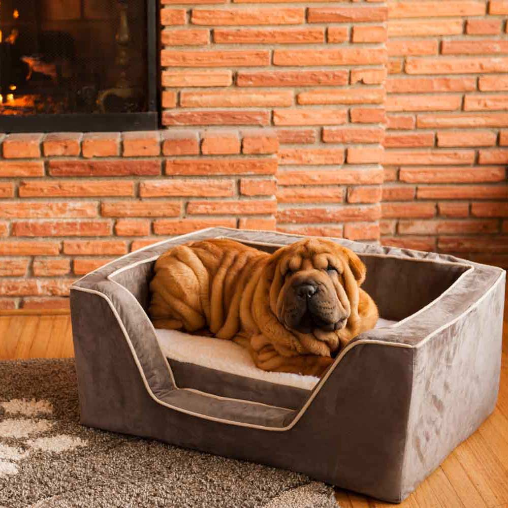 """If your a dog owner, you know that letting your pup sleep in bed with you isn't really considered """"best practice.""""Give your pup an upgrade with a bed of their own and make your best friend's life the best it can be."""
