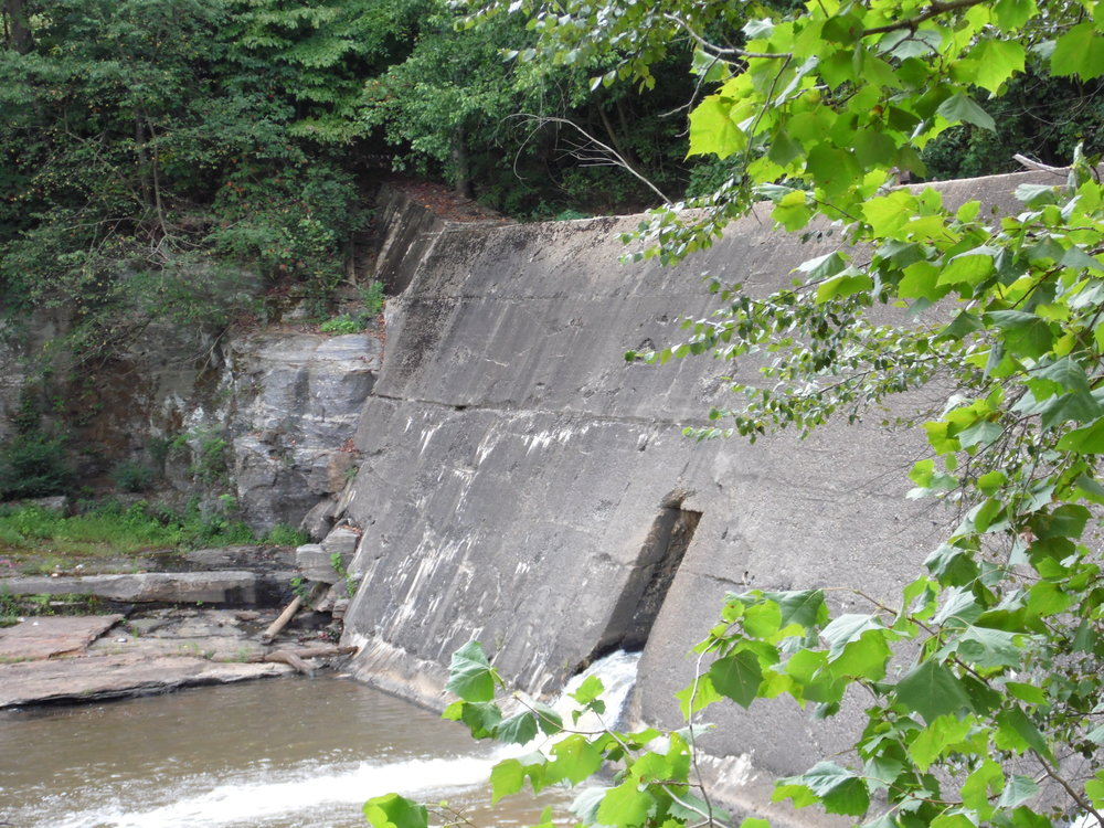 Shuford Dam.JPG