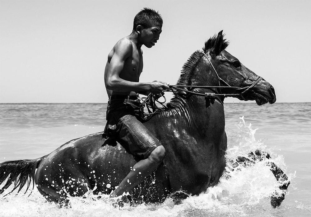 rodd-owen-travel-artwork-horse-photography-interior-design.jpg