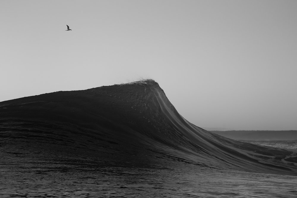 rod-owen-photography-black-and-white-interior-artwork-surfer.jpg