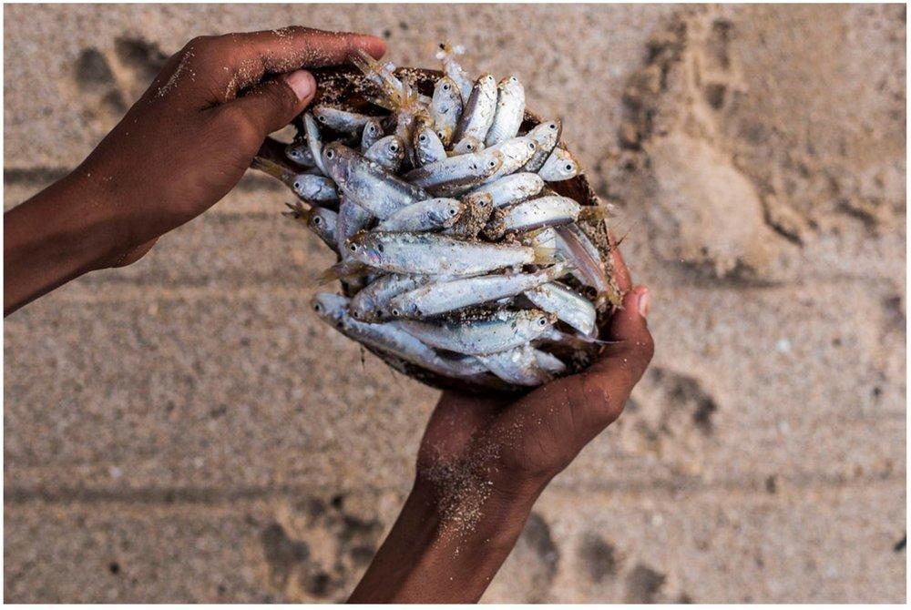rodd-owen-ocean-artworks-photography-for-sale-travel-221.jpg