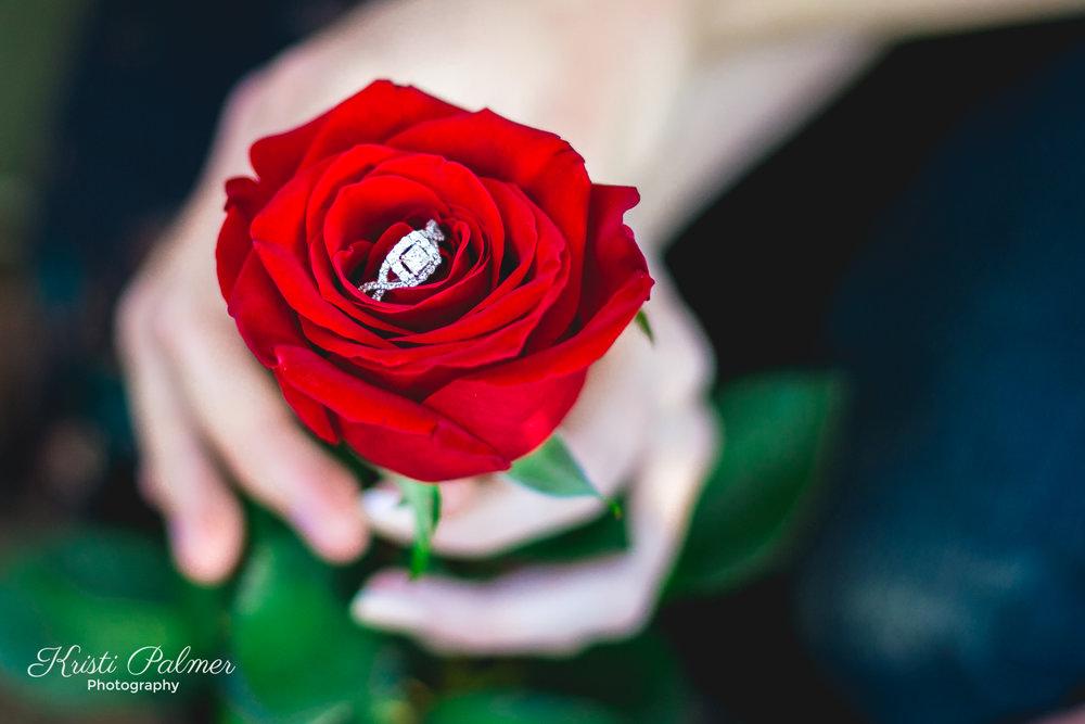 EngagementWeb-23.jpg
