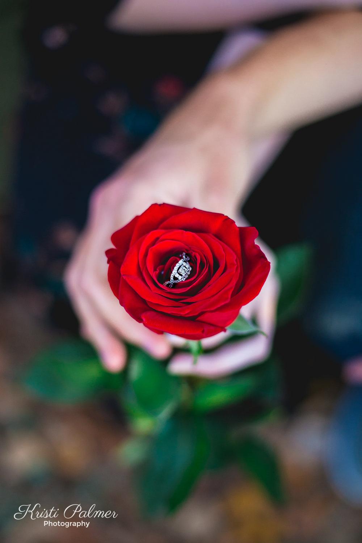 EngagementWeb-24.jpg