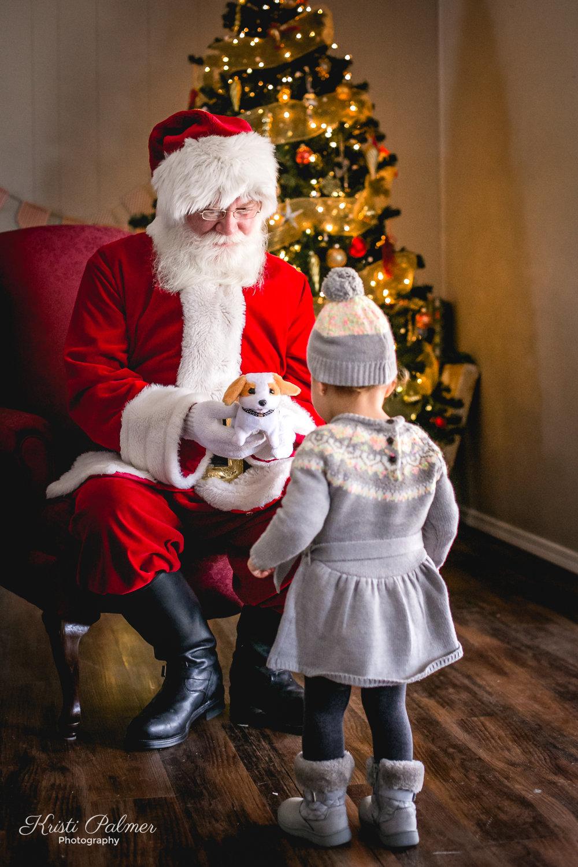 Santa2016Web-99.jpg